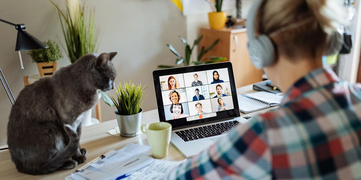Homeoffice-Sitaution: Laptop mit verschiedenen Bildausschnitten, Frau mit Headset und Katze